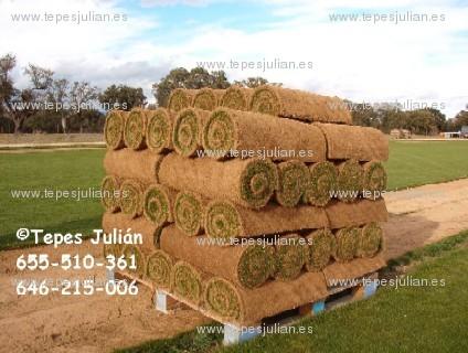 C sped natural en tepes para sevilla tepes juli n for Tepes de cesped baratos