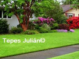 Jardineria y césped natural