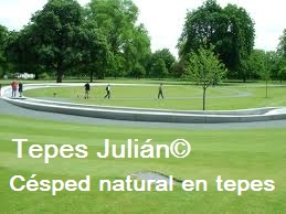 Jardineria Tepes Julián. Tepes de césped para Jardineria.