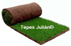 Césped natural en tepes para Jardinería y Areas Verdes