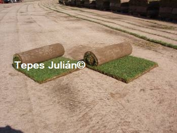 Tepes de césped natural Tepes Julián.